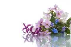 Bello mazzo dei fiori della sorgente Immagine Stock Libera da Diritti