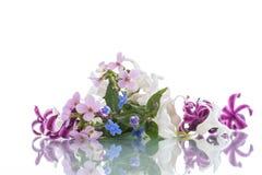 Bello mazzo dei fiori della sorgente Immagini Stock Libere da Diritti