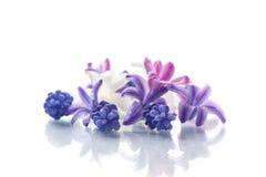 Bello mazzo dei fiori della sorgente Fotografie Stock Libere da Diritti