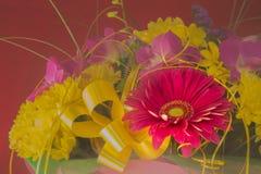 Bello mazzo dei fiori e del crisantemo della gerbera su un diff Fotografia Stock Libera da Diritti