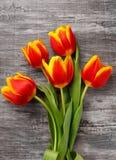 Bello mazzo dei tulipani gialli Immagini Stock