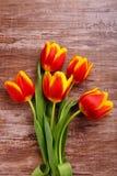 Bello mazzo dei tulipani gialli Fotografie Stock Libere da Diritti