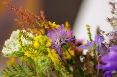 Bello mazzo dei wildflowers in un vaso di vetro Su un fondo del davanzale bianco della finestra Immagine Stock