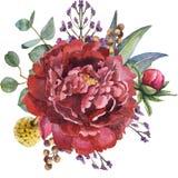 Bello mazzo del fiore dell'acquerello con le foglie ed il ramo illustrazione di stock
