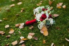 Bello mazzo delle rose rosse e bianche su erba verde con le foglie gialle Immagine Stock Libera da Diritti