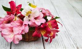 Bello mazzo di alstroemeria rosa Immagini Stock Libere da Diritti
