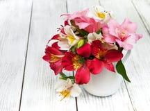 Bello mazzo di alstroemeria rosa Fotografia Stock