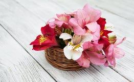 Bello mazzo di alstroemeria rosa Immagine Stock