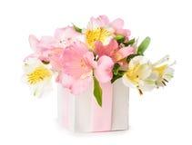 Bello mazzo di Alstroemeria rosa in un contenitore di regalo Fotografie Stock Libere da Diritti