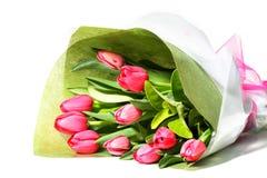 Bello mazzo di tulipani dentellare Fotografia Stock Libera da Diritti