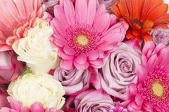 Bello mazzo luminoso del rosa fragrante Fotografia Stock Libera da Diritti