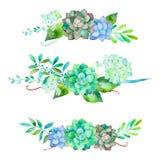 bello mazzo 3 per la vostra progettazione con l'ortensia, le foglie, le bacche e le piante dei succulenti Immagine Stock Libera da Diritti