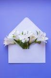 Bello mazzo tenero di Alstroemeria in busta sul BAC blu Immagine Stock