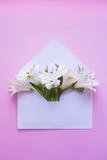 Bello mazzo tenero di Alstroemeria in busta sul BAC rosa Fotografia Stock Libera da Diritti