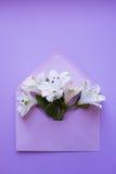 Bello mazzo tenero di Alstroemeria in busta sul backgro Fotografia Stock Libera da Diritti