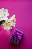 Bello mazzo tenero di Alstroemeria con il contenitore di regalo Fotografia Stock Libera da Diritti