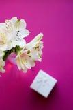 Bello mazzo tenero di Alstroemeria con il contenitore di regalo bianco Fotografia Stock