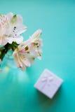 Bello mazzo tenero di Alstroemeria con il contenitore di regalo bianco Immagine Stock