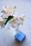 Bello mazzo tenero di Alstroemeria con il contenitore di regalo blu Immagine Stock
