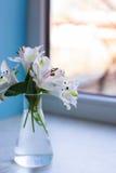 Bello mazzo tenero di Alstroemeria in vaso di vetro vicino a sunn Fotografie Stock Libere da Diritti