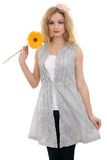 Bello modello biondo felice con un fiore 2 Fotografia Stock Libera da Diritti