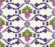 Bello modello dell'uva dell'uva decorativa Fotografia Stock Libera da Diritti