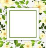 Bello modello della carta del fiore illustrazione di stock