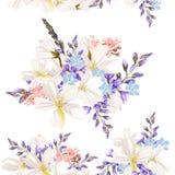Bello modello floreale con i fiori del campo Fotografie Stock