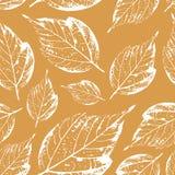 Bello modello senza cuciture dei bolli delle foglie dagli alberi e dalla Florida Immagine Stock