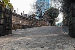 Bello modo di camminata a Tokyo Giappone il 31 marzo 2017 Immagini Stock