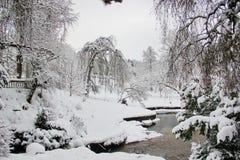 Bello momento nel giardino inglese nell'inverno fotografia stock