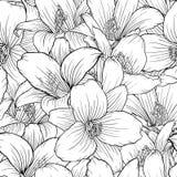 Bello monocromio, modello senza cuciture in bianco e nero con i gigli Linee di contorno disegnate a mano illustrazione vettoriale