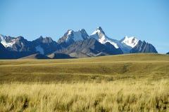Bello Mountain View attraverso il campo nelle Ande, Cordigliera reale, Bolivia immagini stock libere da diritti