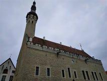 Bello municipio di Tallinn il giorno nuvoloso fotografia stock
