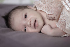 Bello neonato Fotografie Stock