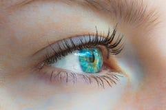 Bello occhio femminile Immagini Stock