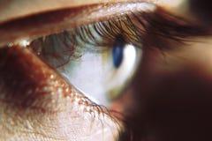 Bello occhio umano, macro, fine su blu, gialla, marrone Fotografia Stock Libera da Diritti
