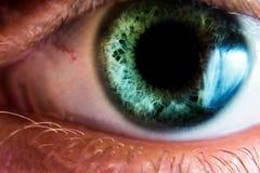 Bello occhio umano, macro, fine su blu, gialla, marrone, Immagini Stock