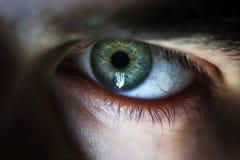 Bello occhio umano, macro, fine su blu, gialla, verde Immagine Stock