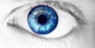 Bello occhio umano, macro, fine su blu, giallo, marrone, verde Fotografie Stock
