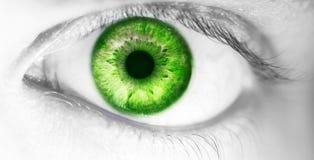 Bello occhio umano, macro, fine su blu, giallo, marrone, verde Fotografia Stock Libera da Diritti