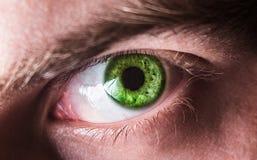 Bello occhio umano, macro, fine su blu, giallo, marrone, verde Immagini Stock
