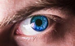 Bello occhio umano, macro, fine sul blu, giallo Immagini Stock Libere da Diritti