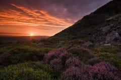 Bello paesaggio al tramonto Fotografia Stock