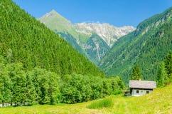 Bello paesaggio alpino, alpi austriache, Europa Fotografia Stock