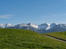 Bello paesaggio alpino con il prato e le alpi in Baviera fotografia stock