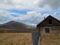 Bello paesaggio Altai della montagna Immagine Stock