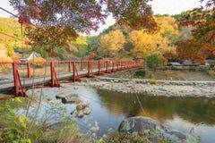 Bello paesaggio in autunno a Korankei, Giappone Immagine Stock