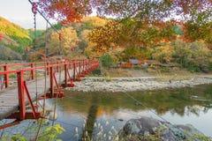 Bello paesaggio in autunno a Korankei, Giappone Immagine Stock Libera da Diritti