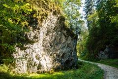 Bello paesaggio in camice sveve Fotografia Stock